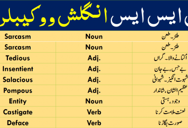 CSS and PMS Vocabulary PDF with Urdu Meanings, English Vocabulary with Urdu meanings for CSS and PMS. CSS Vocabulary PDF, English Vocabulary for exams Preparation, Advanced English Vocabulary for IELTS. CSS Past papers English Vocabulary