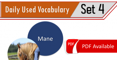 Daily Used English Vocabulary list with Urdu meanings - Set 4, Spoken English words list PDF. Basic English vocabulary with Urdu meanings, Pair of Words with Meanings PDF, CSS Solved Pair of Words Download PDF, Exams pair of words download PDF