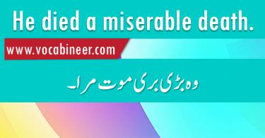 Basic English Sentences with Hindi / Urdu Translation – Set 27