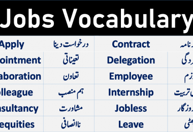 Jobs Vocabulary and Work Vocabulary with Urdu meanings. Important English words about jobs work and freelancing. English Vocabulary about Jobs and Professions
