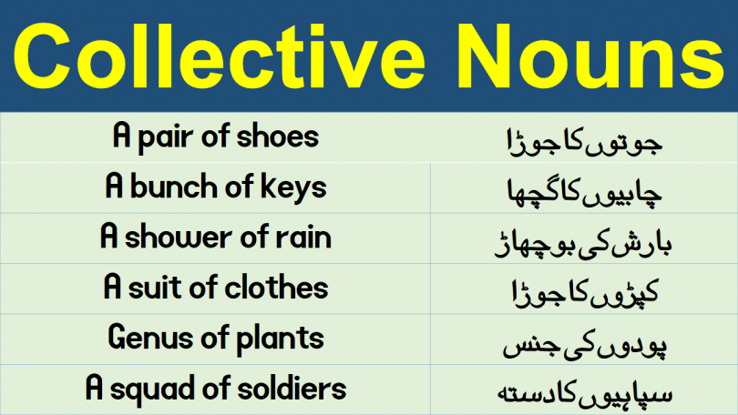 Collective Nouns List in Urdu & Hindi learn list of collective nouns with their meanings in Urdu and Hindi 100 examples of collective nouns.