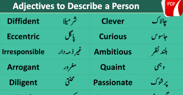 Personality Adjectives in Urdu & Hindi, adjectives to describe a person, Adjectives of personality in Urdu Hindi, English vocabulary, Most used English words in Urdu, English vocabulary for beginners, English words list. character adjectives. personality vocabulary.