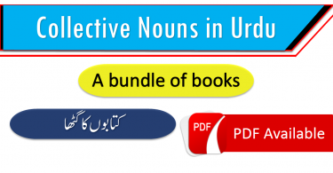 Collective nouns in Urdu Hindi | Group terms,Vocabulary in Urdu, Vocabulary for IELTS, Vocabulary list, Vocabulary Urdu to English, Vocabulary words with meaning, Vocabulary for spoken English, Vocabulary words for A level, Vocabulary words for O level, Vocabulary words for CSS, Vocabulary words for kids, Vocabulary words for GRE, Vocabulary words for TOEFL, Urdu to English Vocabulary, vocabulary for daily use, English words and meanings, list of daily used english words, spoken English words list, English words used in daily life, vocabulary for fpsc, english vocabulary for css, daily use vocabulary, English vocabulary list, spoken english words list, Spoken English vocabulary, Common English words used in daily life, English to Urdu vocabulary, English vocabulary in Urdu, English to Urdu, Urdu to English, English words in Urdu, English words with Urdu meanings, English vocabulary with Urdu meanings, English to Hindi vocabulary, English vocabulary in Hindi, English to Hindi, Hindi to English, Common English words with Hindi, 3000 Vocabulary words, Advanced English vocabulary, Daily used vocabulary in Urdu, English vocabulary with Urdu meanings, Vocabulary for kids in Urdu, Islamic vocabulary words, Daily used English vocabulary, English vocabulary for beginners with Urdu, vocabulary collection with Urdu, Urdu to English vocabulary with PDF, English to Urdu vocabulary with PDF, Vocabulary collection with PDF, Vocabulary with Urdu, 1000 English to Urdu words for daily use, Common English words for daily use, English vocabulary with Urdu PDF, Easy English vocabulary, Most used English words in Urdu, English vocabulary for beginners, English words list with Urdu meanings, English vocabulary collection with Urdu, List of English words in Urdu, Daily used English words with Urdu meanings, Best of English to Urdu vocabulary, Best of English to Hindi vocabulary, Vocabulary collection in Hindi, List of English vocabulary in Hindi, Pictures vocabulary in Urdu, Urdu to English vocabulary with pictures, Pictures vocabulary .www.vocabineer.com