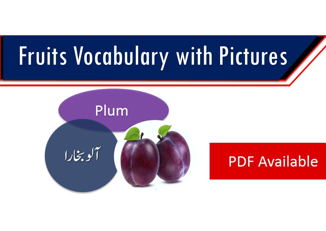 urdu food names