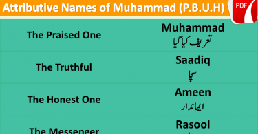 Attributive Names of Muhammad (P.B.U.H) with Urdu, English to English Vocabulary, English vocabulary in Urdu for beginners, Islamic vocabulary in Urdu