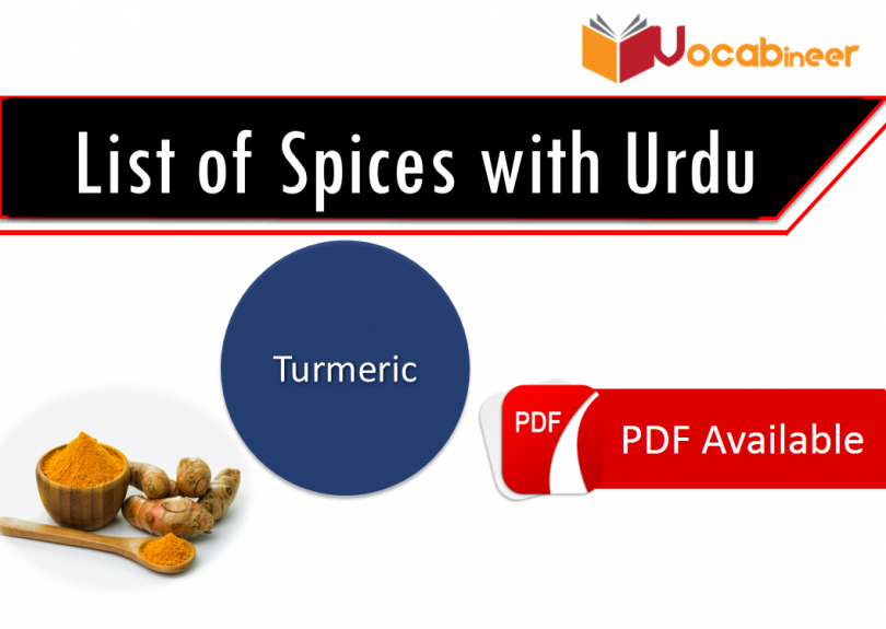 List Of Spices With Urdu Hindi Spices Vocabulary Vocabineer