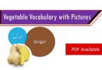 Vocabulary in Urdu, Vocabulary for IELTS, Vocabulary list, Vocabulary Urdu to English, Vocabulary words with meaning, Vocabulary for spoken English, Vocabulary words for A level, Vocabulary words for O level, Vocabulary words for CSS, Vocabulary words for kids, Vocabulary words for GRE, Vocabulary words for TOEFL, Urdu to English Vocabulary, vocabulary for daily use, English words and meanings, list of daily used english words, spoken English words list, English words used in daily life, vocabulary for fpsc, english vocabulary for css, daily use vocabulary, English vocabulary list, spoken english words list, Spoken English vocabulary, Common English words used in daily life, English to Urdu vocabulary, English vocabulary in Urdu, English to Urdu, Urdu to English, English words in Urdu, English words with Urdu meanings, English vocabulary with Urdu meanings, English to Hindi vocabulary, English vocabulary in Hindi, English to Hindi, Hindi to English, Common English words with Hindi, 3000 Vocabulary words, Advanced English vocabulary, Daily used vocabulary in Urdu, English vocabulary with Urdu meanings, Vocabulary for kids in Urdu, Islamic vocabulary words, Daily used English vocabulary, English vocabulary for beginners with Urdu, vocabulary collection with Urdu, Urdu to English vocabulary with PDF, English to Urdu vocabulary with PDF, Vocabulary collection with PDF, Vocabulary with Urdu, 1000 English to Urdu words for daily use, Common English words for daily use, English vocabulary with Urdu PDF, Easy English vocabulary, Most used English words in Urdu, English vocabulary for beginners, English words list with Urdu meanings, English vocabulary collection with Urdu, List of English words in Urdu, Daily used English words with Urdu meanings, Best of English to Urdu vocabulary, Best of English to Hindi vocabulary, Vocabulary collection in Hindi, List of English vocabulary in Hindi, Pictures vocabulary in Urdu, Urdu to English vocabulary with pictures,Vegetables vocabul