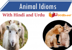 Animal idioms with hindi and urdu meanings and translation Idioms about animals. Idioms related to Animals PDF. Idioms for Animals with translation.