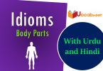 Body parts idioms with Hindi and Urdu meanings PDF. English idoms related to human body parts. Common body parts idioms with sentences and meanings