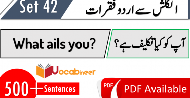 English Sentences phrases translation and meanings in Urdu Hindi 42