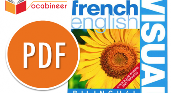 Oxford French dictionary PDF