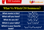 What vs which exercises, what vs which grammarly, Which vs what in interrogative sentences PDF, Which vs what relative clause, Which or what day PDF, Which or what place PDF, Use of what and which in English grammar, Who vs whom PDF