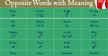 Opposite Words List with Meaning in Urdu PDF, synonyms and antonyms in Urdu PDF,English for Kids, English Synonyms Antonyms, words Opposite PDF, with Urdu Meaning, with English Meaning, words Opposite List in Urdu, words Opposite List in English With Urdu Meaning, words Meaning PDF, English in Urdu PDF, English in Hindi PDF, English Vocabulary With Photos, English Words With Picture, English Dictionary for Kids, English Vocabulary for Kids, English for Children, English for Beginners, English Basic, basic English Words Meaning PDF, English Vocabulary List PDF With Urdu, English Words With Meaning and Pictures, picture Meaning, Basic English Words for kids, Important Words for kids, Basic Vocabulary PDF, Opposite words in Urdu PDF, Synonyms and antonyms in Urdu PDF