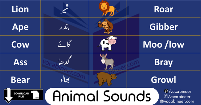 Animals Sounds In English is about learning different voices produced by animals