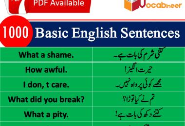 Best English sentences in Urdu PDF, Most used English sentences in Hindi, English to Hindi conversation PDF, Kids English, Basic English lessons in Urdu