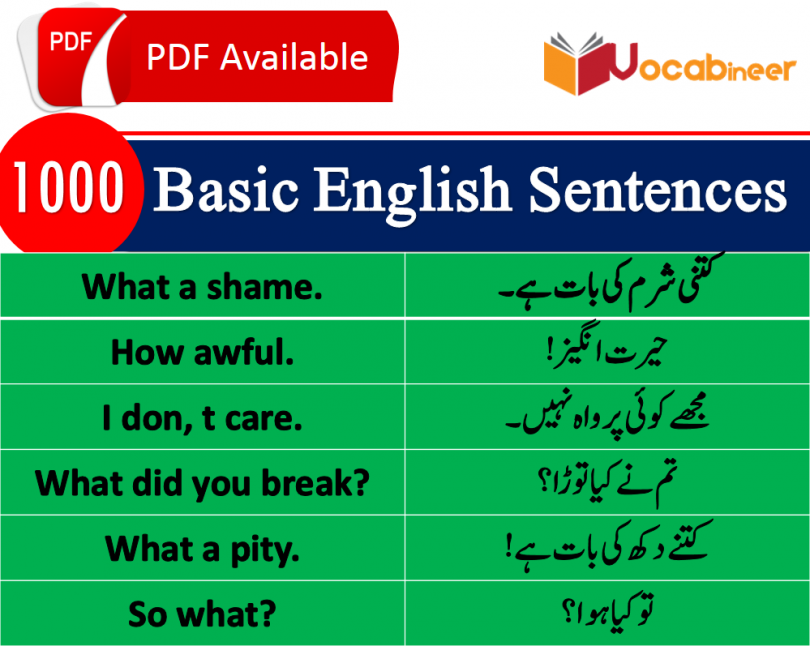 Hindi Sentences in English for Spoken English Download PDF