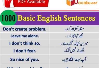 English Urdu Sentences   Urdu Sentences with English translation