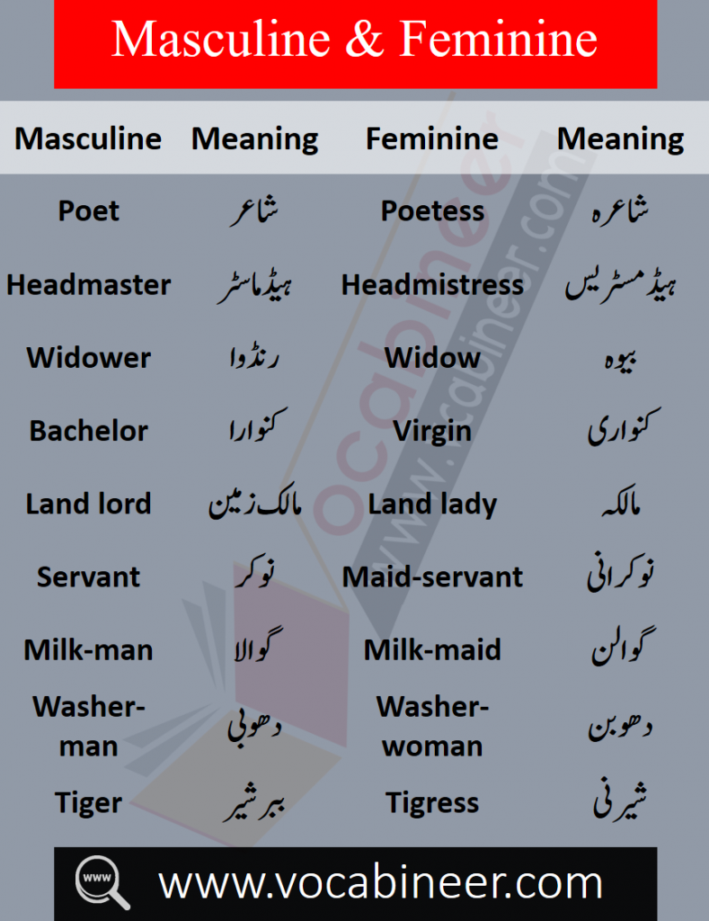 List of male and female words with Urdu, Masculine and feminine in Urdu PDF, List of masculine and feminine words in Urdu, Basic English words in Urdu PDF, English to Urdu words PDF