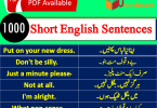Basic English Sentences in Hindi and Urdu Translation PDF