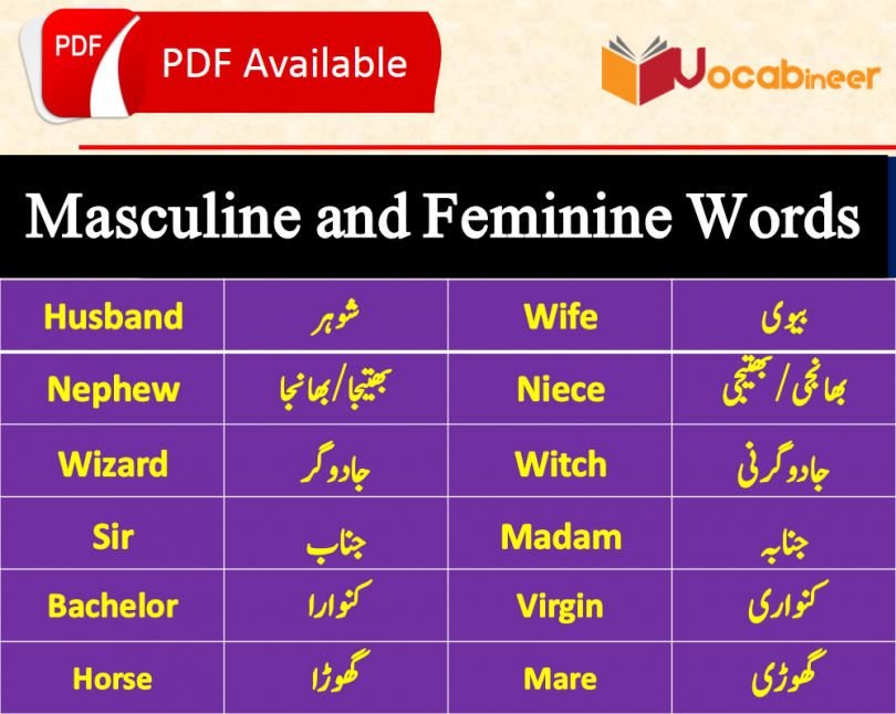 Masculine and Feminine with Urdu Meanings Download PDF Free