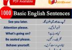 Basic English lessons in Hindi, 1000 English sentences in Urdu, 1500 English sentences in Hindi PDF, Often Used English sentences in Urdu, Kids sentences, Essential English sentences PDF