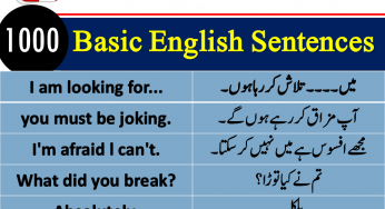 Frequently Used English to Urdu Sentences