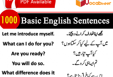 Common English Sentences, Frequently Used English to Urdu Sentences, Most used sentences in Hindi, Sentences for kids speaking, List of sentences in Urdu PDF