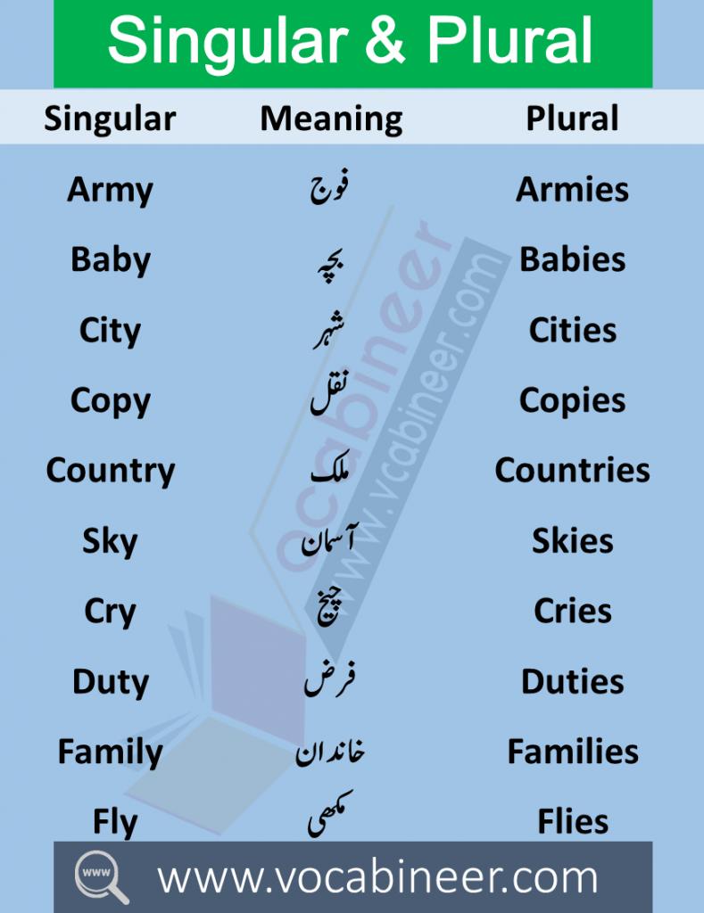 Singular Plural in Urdu 100 Urdu words in English PDF Wahid Jama in Urdu Singular Plural in Urdu meanings this lesson consists of 100 Singular Plural English words with meanings in Urdu used in daily life.