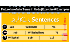 Future Indefinite Tense in Urdu PDF Future Indefinite Tense in Urdu Uses, Exercise and Examples for Future Indefinite simple sentences, Future Indefinite negative sentences and Future Indefinite interrogative sentences. Future Indefinite Tense in Urdu or Simple Future Tense in Urdu with examples and exercises