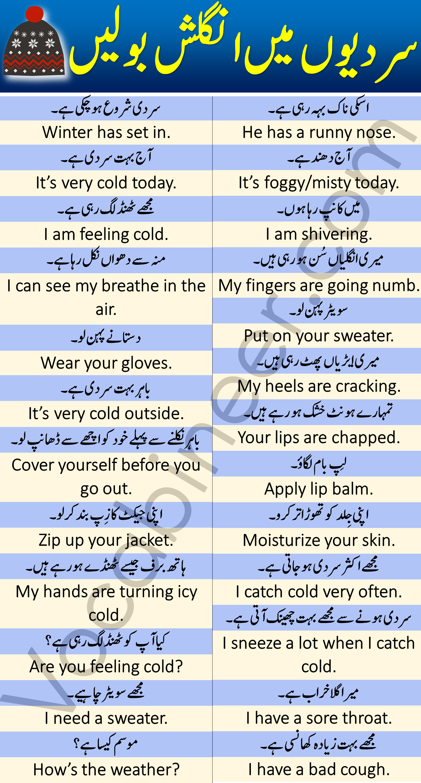 English Sentences in Urdu Translation for Speaking English