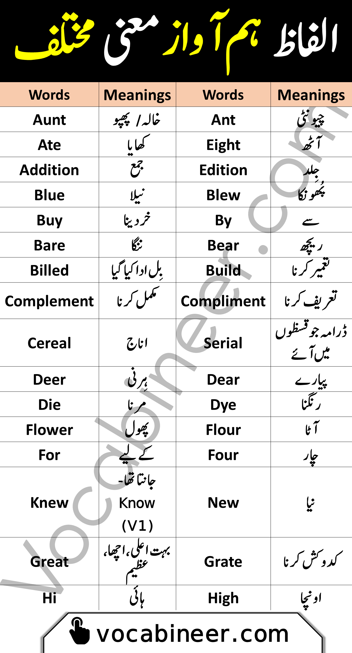 Homophones Vocabulary words with urdu meanings