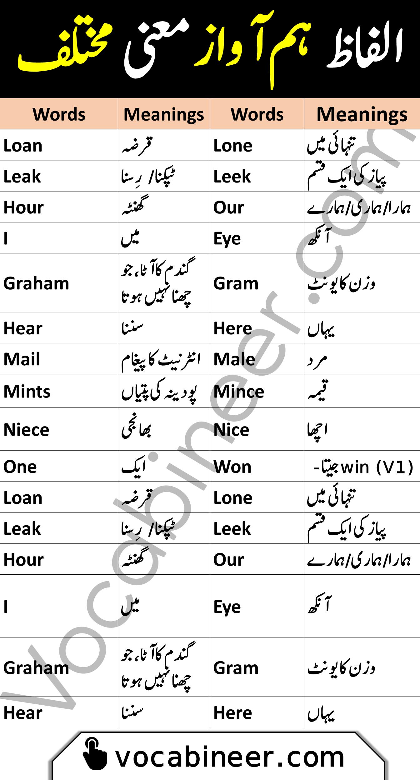 Homonyms vocabulary words in Urdu