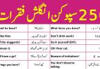 250 English Sentences for Daily Use English