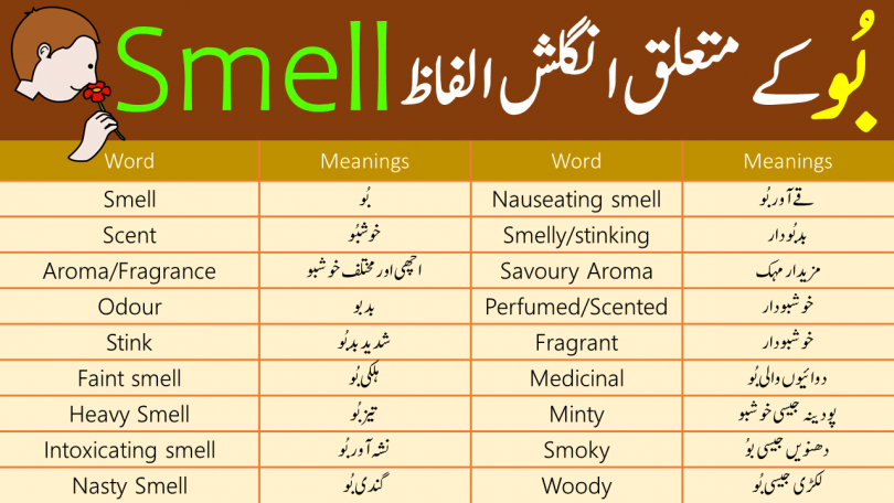 Smell Vocabulary List with Urdu Meanings