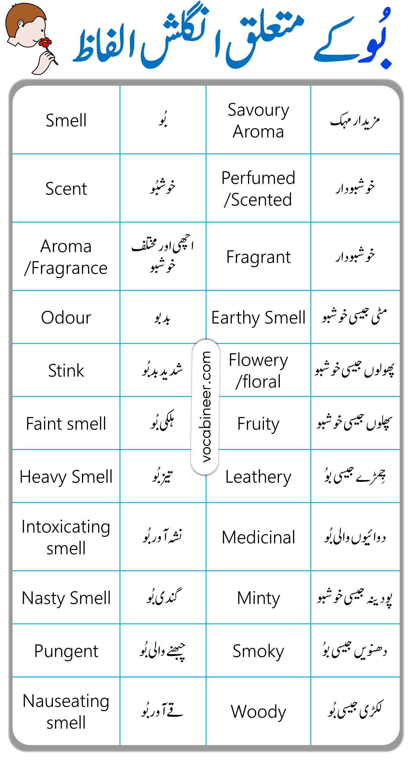 Smell Vocabulary
